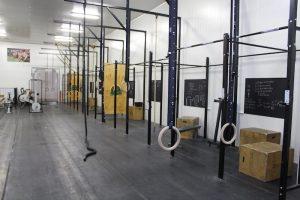Snake Interior Gym